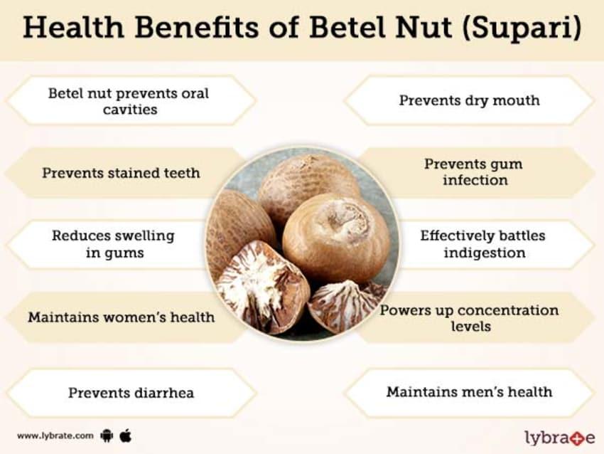 Betel Nut – ประโยชน์ของ Betel Nut (Supari) และผลข้างเคียง!