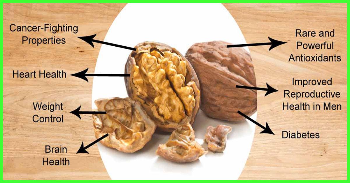 Walnut – ประโยชน์ต่อสุขภาพ 13 ประการที่ควรกินวอลนัททุกวัน!