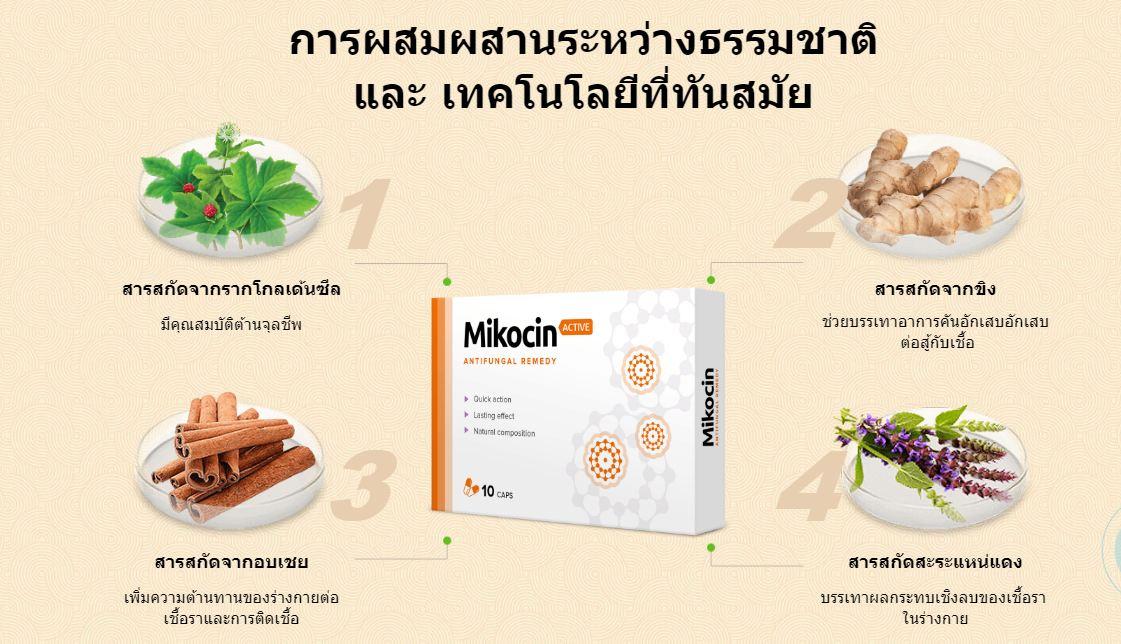 Mikocin – สัมผัสได้ถึงความสามัคคีและความสมดุลด้วยแคปซูลต้านเชื้อราใหม่ในปี