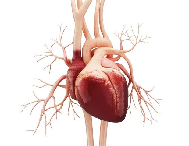 วิจัยเผยความเสี่ยงโรคหัวใจเพิ่มขึ้นจากการทำงานกะกลางคืน